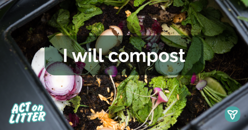 Food being composted